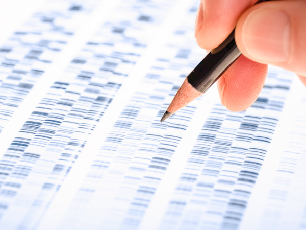 person writing on genetic test
