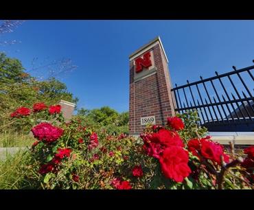 Home university of nebraska university of nebraska lincoln fandeluxe Images
